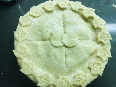 Double Pie Crust